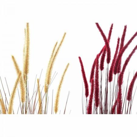 Radio-Cassette Daewoo...