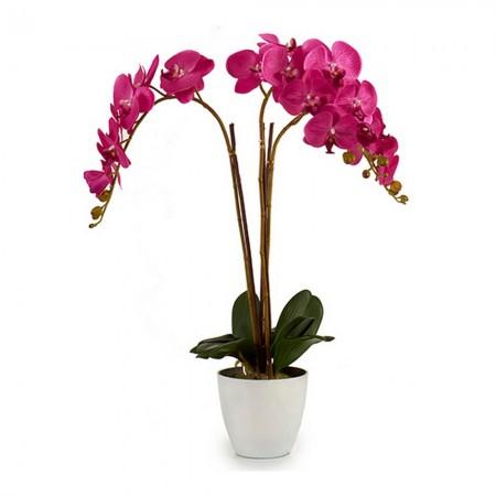 Webcam Xiaomi Imilab...