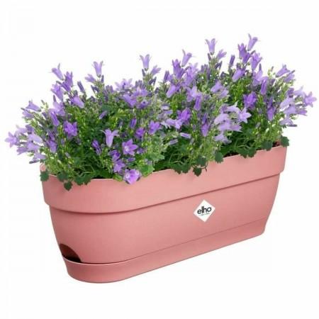 Lampe LED Philips SpotLV...