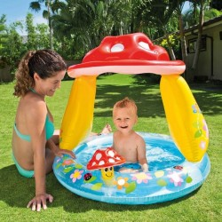 Piscine gonflable Intex 45...
